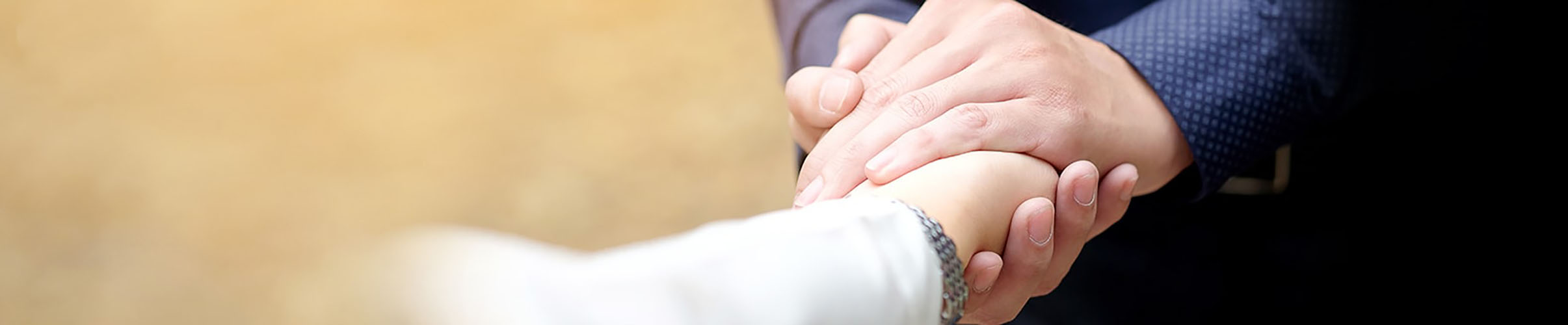 An Image of a hand shake